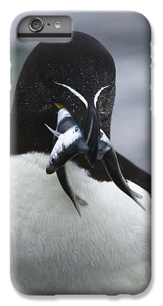 Feeding Time... IPhone 7 Plus Case by Nina Stavlund