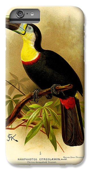 Toucan iPhone 7 Plus Case - Toucan by Dreyer Wildlife Print Collections