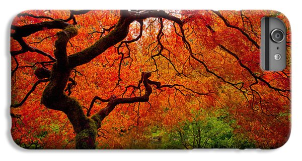 Red iPhone 7 Plus Case - Tree Fire by Darren  White