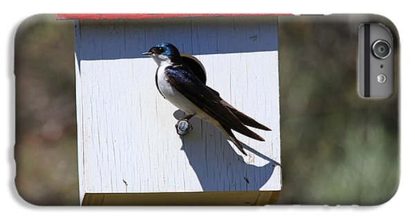 Swallow iPhone 7 Plus Case - Tree Swallow Home by Mike  Dawson
