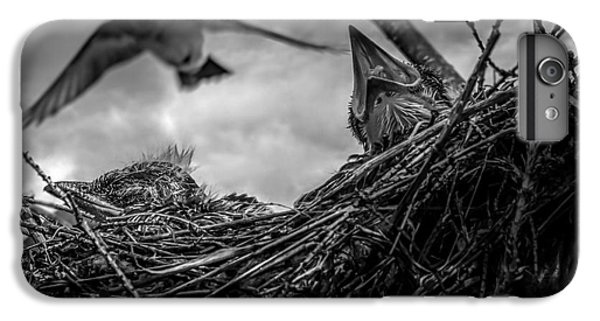 Swallow iPhone 7 Plus Case - Tree Swallows In Nest by Bob Orsillo