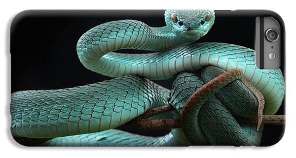 Viper iPhone 7 Plus Case - Trimeresurus Insularis [blue] by Wel Nofri