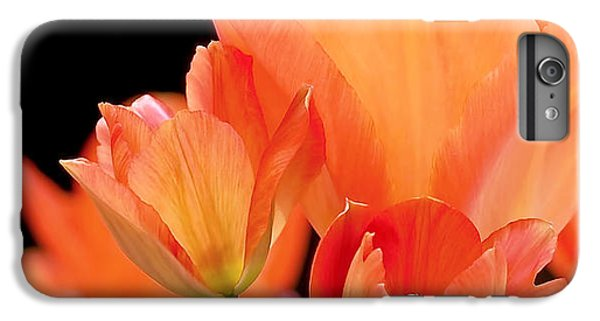 Tulips In Shades Of Orange IPhone 7 Plus Case