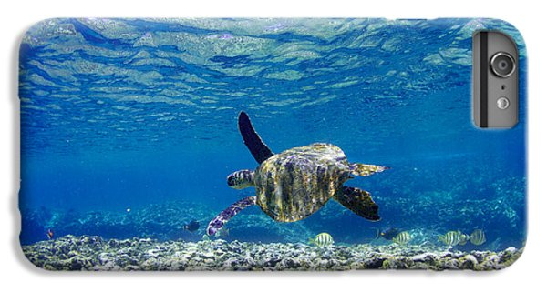 Turtle iPhone 7 Plus Case - Turtle Cruise by Sean Davey