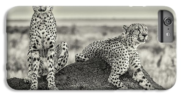 Cheetah iPhone 7 Plus Case - Two Cheetahs Watching Out by Henrike Scheid
