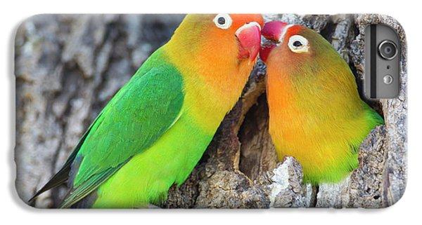 Lovebird iPhone 7 Plus Case - Two Fischer's Lovebirds (agapornis by James Heupel
