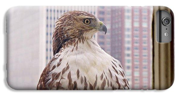Hawk iPhone 7 Plus Case - Urban Red-tailed Hawk by Rona Black