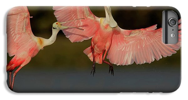 Usa, Florida, Tampa Bay, Alafaya Banks IPhone 7 Plus Case