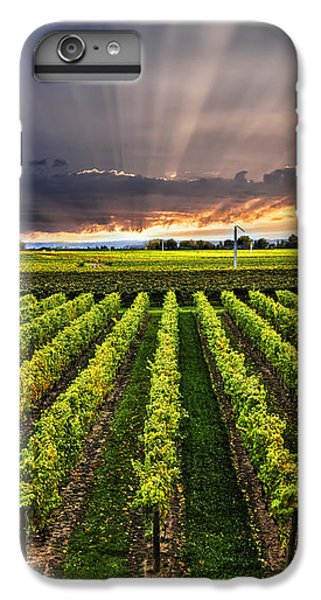 Vineyard At Sunset IPhone 7 Plus Case