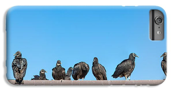 Vultures On Anhinga Trail, Everglades IPhone 7 Plus Case