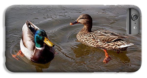 Wading Ducks IPhone 7 Plus Case
