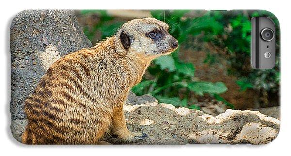 Meerkat iPhone 7 Plus Case - Watchful Meerkat by Jon Woodhams