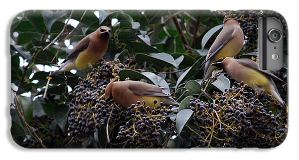 Cedar Waxing iPhone 7 Plus Case - Wax Wings Supper  by Skip Willits