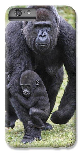 Western Lowland Gorilla Walking IPhone 7 Plus Case by Duncan Usher