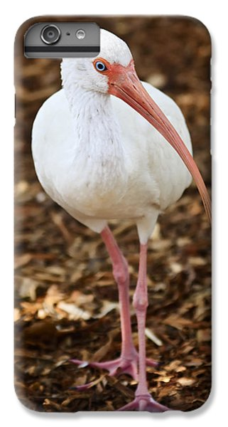Ibis iPhone 7 Plus Case - White Ibis by Adam Romanowicz