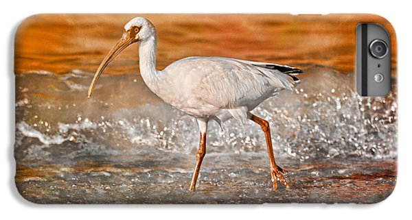 Ibis iPhone 7 Plus Case - White Ibis Stroll by Betsy Knapp