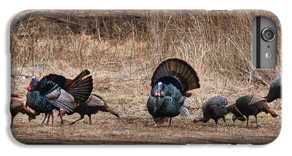 Wild Turkeys IPhone 7 Plus Case by Lori Deiter