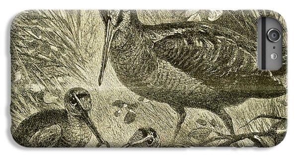 Woodcock Austria 1891 IPhone 7 Plus Case by Austrian School