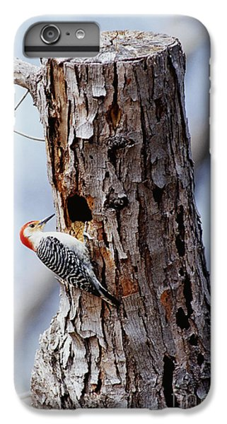 Woodpecker And Starling Fight For Nest IPhone 7 Plus Case by Gregory G. Dimijian