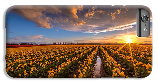 Yellow Fields And Sunset Skies IPhone 7 Plus Case by Mike Reid