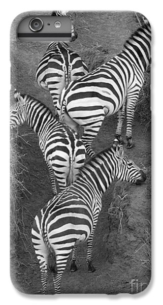 Zebra Design IPhone 7 Plus Case by Carol Walker