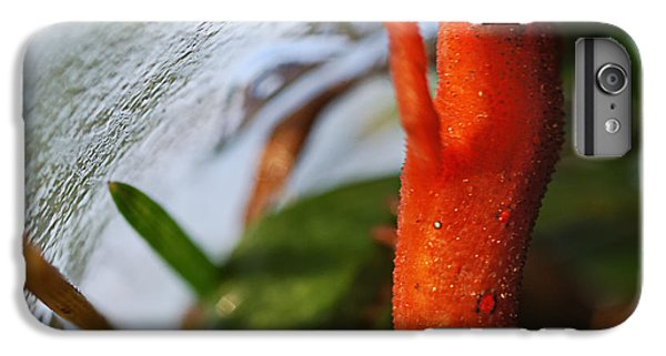 Newts iPhone 7 Plus Case -  Glass Ceiling by Susan Capuano