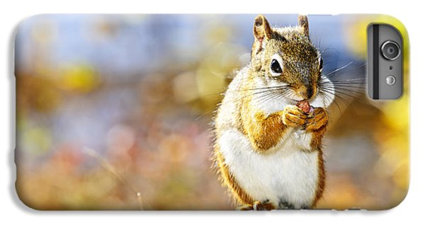 Red Squirrel IPhone 7 Plus Case by Elena Elisseeva