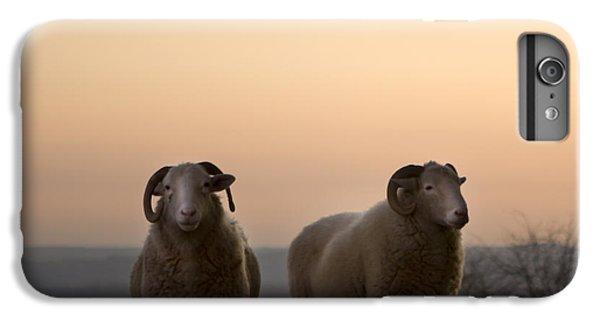 Sheep iPhone 7 Plus Case - The Lamb by Angel Ciesniarska