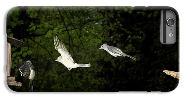 Tufted Titmouse In Flight IPhone 7 Plus Case by Ted Kinsman