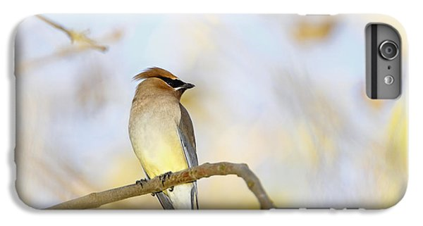 Cedar Waxing iPhone 7 Plus Case - Cedar Waxwing On Yellow And Blue by Susan Gary