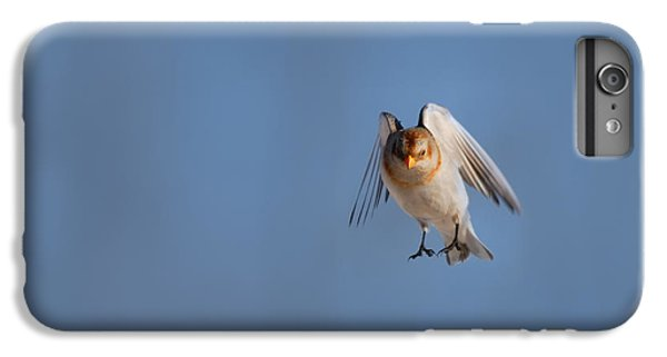 Bunting iPhone 7 Plus Case - Coming In For A Landing by Susan Capuano