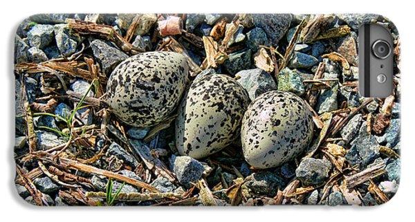 Killdeer iPhone 7 Plus Case - Killdeer Bird Eggs by Jennie Marie Schell