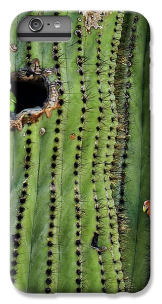 Lovebirds And The Saguaro  IPhone 7 Plus Case by Saija  Lehtonen