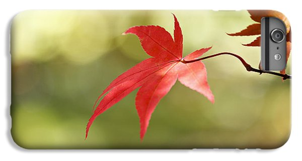 IPhone 7 Plus Case featuring the photograph Red Leaf. by Clare Bambers