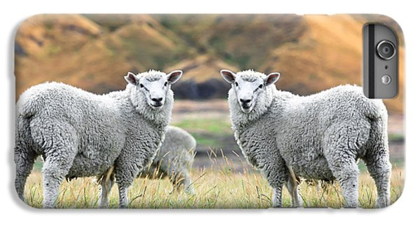 Sheep iPhone 7 Plus Case - Sheeps by MotHaiBaPhoto Prints
