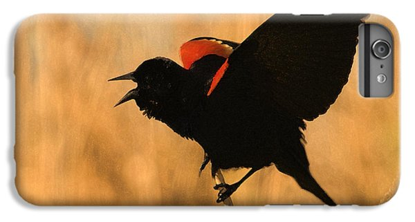 Singing At Sunset IPhone 7 Plus Case by Betty LaRue