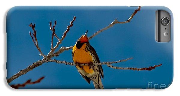 Meadowlark iPhone 7 Plus Case - Western Meadowlark by Mitch Shindelbower