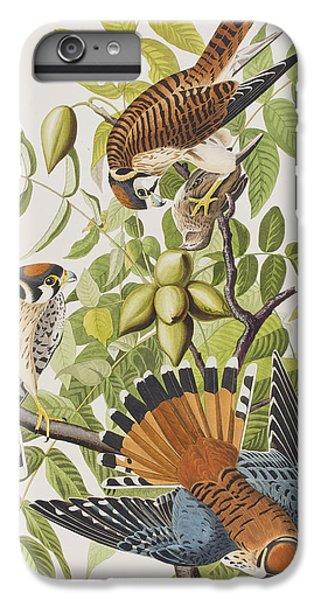 American Sparrow Hawk IPhone 7 Plus Case by John James Audubon