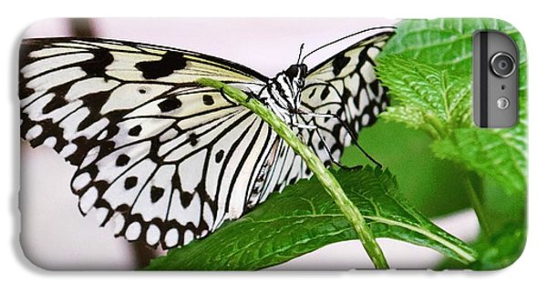 Paper Kite Butterfly No. 1 IPhone 7 Plus Case