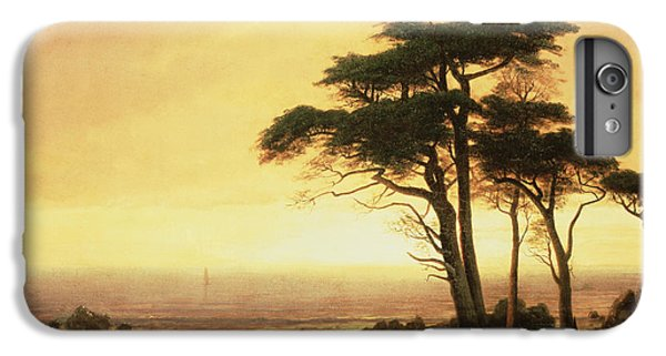 California Coast IPhone 7 Plus Case