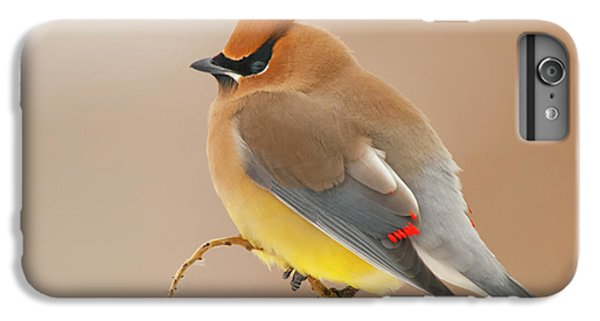 Cedar Waxing iPhone 7 Plus Case - Cedar Wax Wing by Carl Shaw