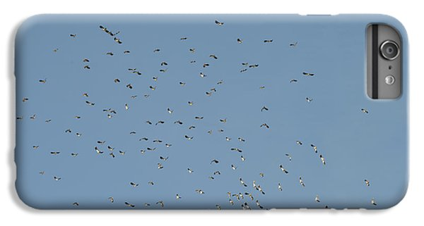 Flock Of Beautiful Migratory Lapwing Birds In Clear Winter Sky IPhone 7 Plus Case