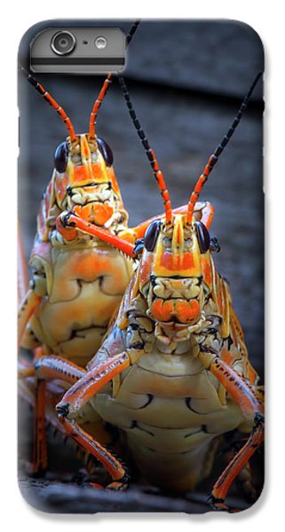 Grasshoppers In Love IPhone 7 Plus Case by Mark Andrew Thomas