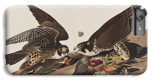Great-footed Hawk IPhone 7 Plus Case by John James Audubon
