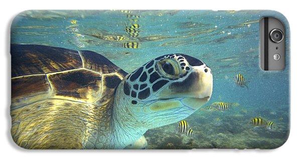 Turtle iPhone 7 Plus Case - Green Sea Turtle Balicasag Island by Tim Fitzharris