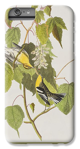 Hemlock Warbler IPhone 7 Plus Case by John James Audubon