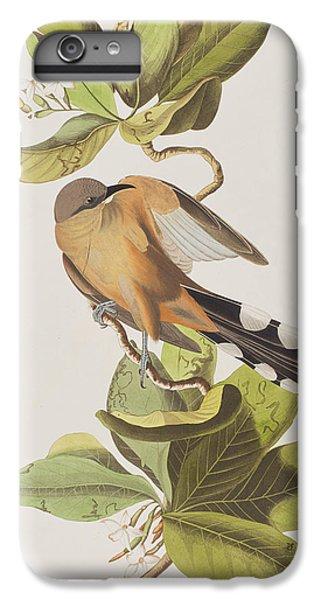Cuckoo iPhone 7 Plus Case - Mangrove Cuckoo by John James Audubon
