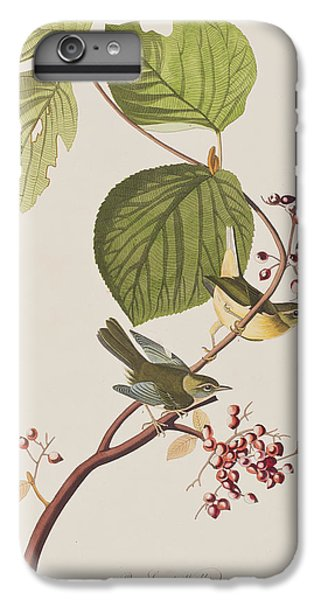 Pine Swamp Warbler IPhone 7 Plus Case by John James Audubon