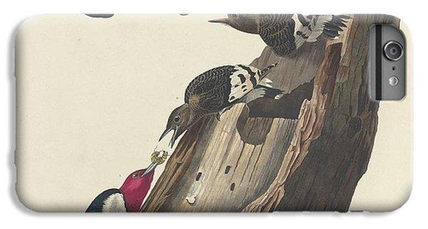 Red-headed Woodpecker IPhone 7 Plus Case
