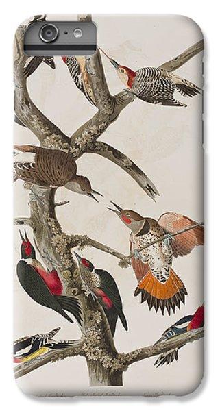 Woodpecker iPhone 7 Plus Case - Woodpeckers by John James Audubon